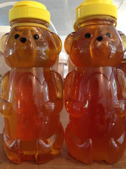 2 Bottles of honey in plastic bears